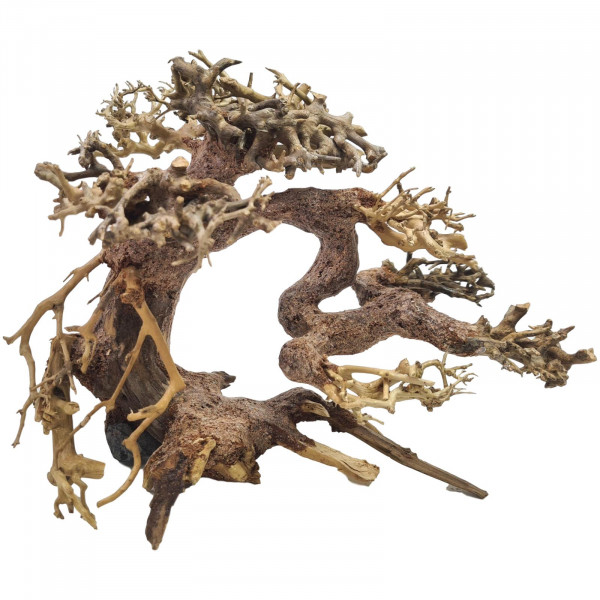 Aquarium Bonsai Baum ca. 20x15 cm # B