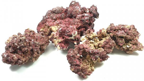Real Reef Rock medium / large lose Steine kg Ware
