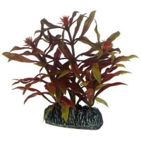 Hobby Nesaea 13 cm künstliche Aquariumpflanze