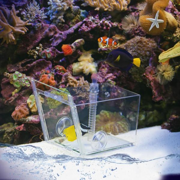 Aqua-Medic FISH TRAP Fisch Falle