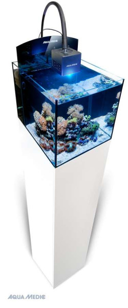Aqua Medic Blenny Qube Meerwasseraquarium Komplett