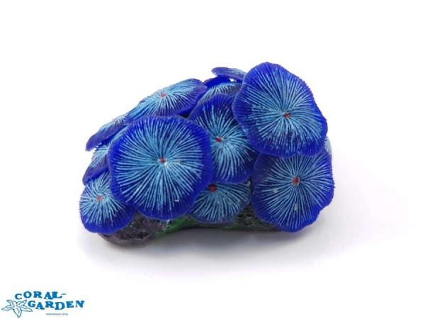 Scheibenanemonen blau | Mushroom Colony blue