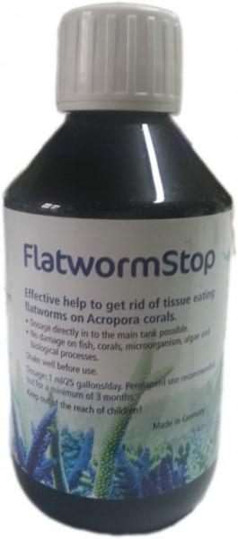 Korallenzucht Flatworm Stop