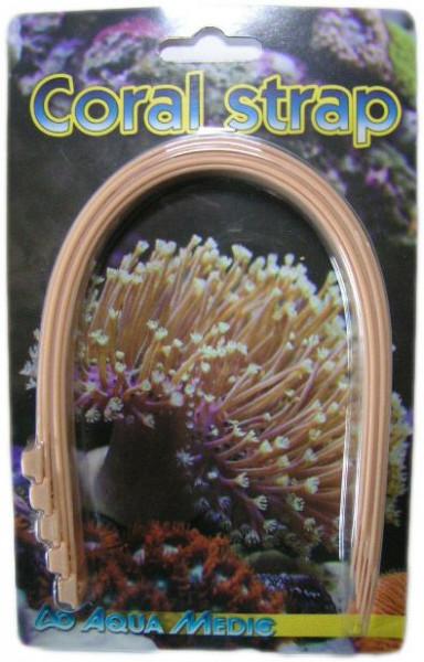 Coral Strap