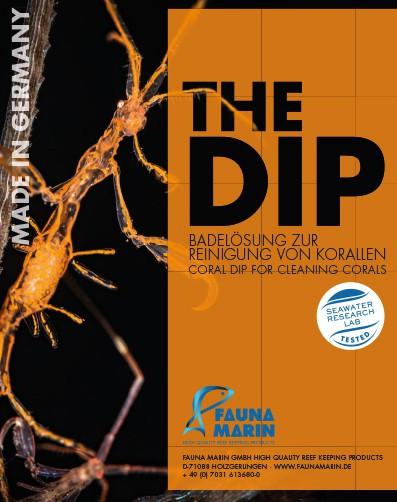 Fauna Marin THE DIP