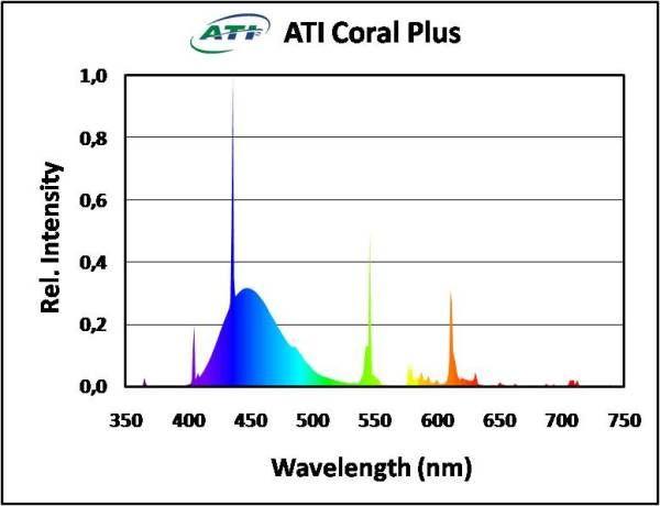 ATI Coral Plus 24 Watt