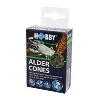 Hobby Alder Cones   50 St. Schwarzerlenzapfen