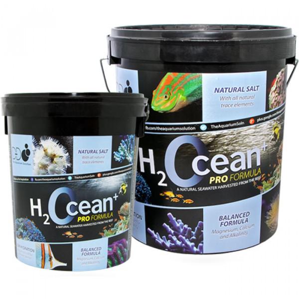 D-D H2Ocean Meersalz Pro Formula 6,6 kg Eimer