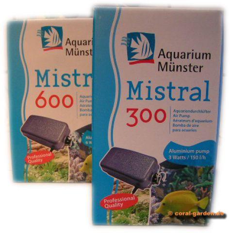 Aquarium Münster Mistral Durchlüfter Pumpen